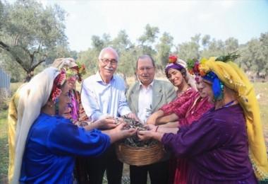 Zeytinyağının Litresini 100 Bin Liradan Satışa Sunacaklar