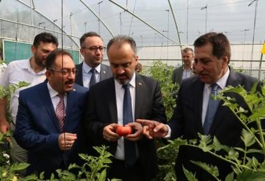 'Tarımla Engellerimizi Aşıyoruz Projesi'nin İlk Hasadı Yapıldı