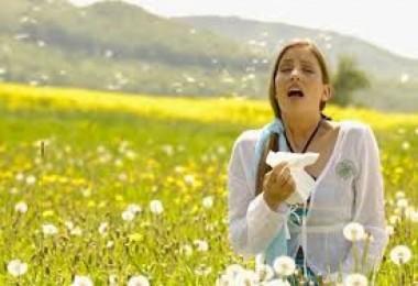 Alerjilerle Mücadele İçin 9 İpucu