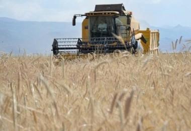 Tarım- ÜFE Eylül ayında Yüzde 1,59 arttı