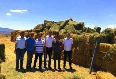 Tarım ve Orman İl Müdürü Tarıma Dayalı Ekonomik Yatırımları İnceledi
