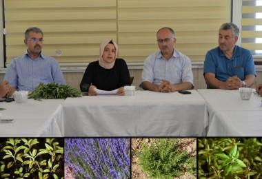 Kayseri'de Tıbbi ve Aromatik Bitki Yetiştiricileri Örgütleniyor