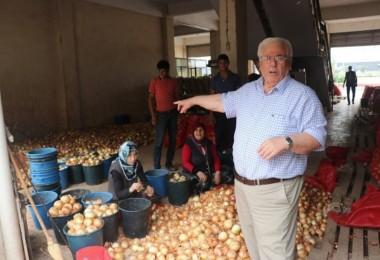 Patates Ve Soğan Fiyatlarıyla İlgili Çok Önemli Açıklama!