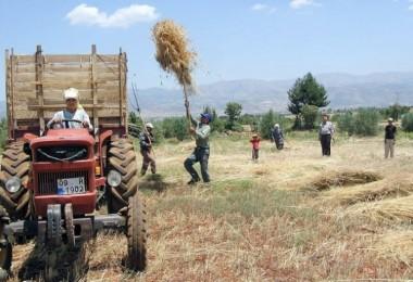 Gençler Tarımdan Kaçıyor, Çiftçilerin Yaş Ortalaması 58'e Yükseldi