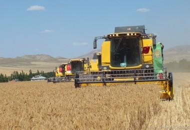 Ege Bölgesinde Tarım Ürünleri İhracatı Rekora Gidiyor
