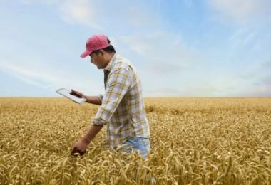 ZMO: Ziraat Mühendisliği Mesleği Dışlanarak Ülkemizde Tarım Ve Gıda Sorunları Çözülemez