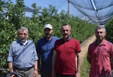 Niğde Elma Üretiminde Türkiye'de Olduğu Gibi Dünyada 'Da Söz Sahibi