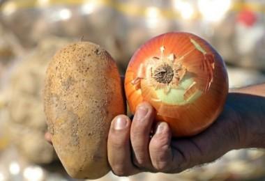 Soğan Ve Patatesten Yeni Zam Sinyali