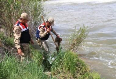 Güvenlik Güçleri 'Uçan Balık'lar İçin Seferber Oldu