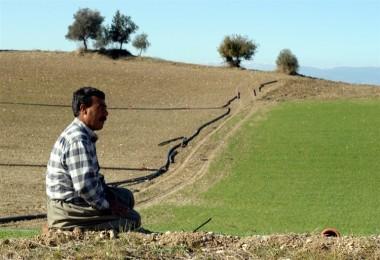 Çiftçilerin borç yapılandırmalarında son tarih 31 Temmuz