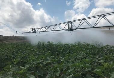 Çiftçilere Verilen Hibe Destekleri Devam Ediyor