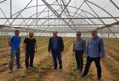 Şahin: Erzincan'da Seracılık Her Geçen Gün Gelişiyor
