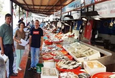 Yalova'da Balık Satış Yerlerini Denetlendi