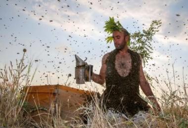Arı Adam'ı gören şaşkına dönüyor! 'Rekor kırana kadar devam edeceğim'