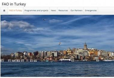 FAO, Türkiye Ülke İnternet Sitesini Açtı!