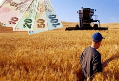 2018 Yılı Sertifikalı Tohum Kullanım Desteği Ödemeleri Başladı