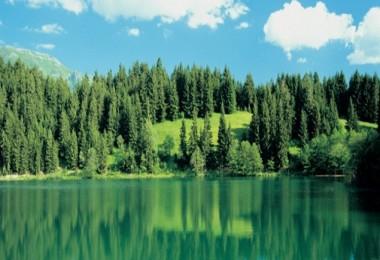 Ülkemizde 3 Milyon 211 Bin Hektar Alan Özel Statülerle Korunuyor