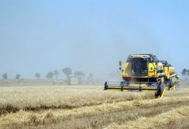 Tarım ÜFE Temmuz ayında %1,71 arttı