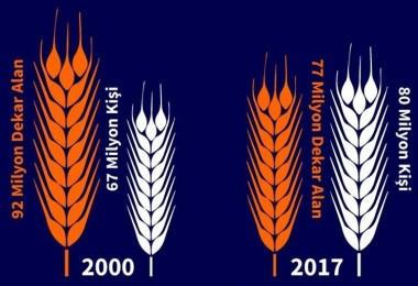 Buğdaydan Para Kazanamayan Çiftçiler Ekimi Bıraktı
