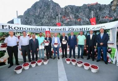 Amasya Uluslararası Atatürk Kültür ve Sanat Festivali kapsamında kiraz teşvik yarışması gerçekleştirildi