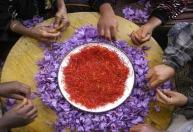 Gıdada Coğrafi İşaret Yerel Ekonomiler Ve Sürdürülebilir Kalkınma İçin Büyük Bir Destek