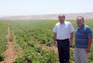 Erzincan'da Tarım Sektörüne Yatırımlar Sürüyor
