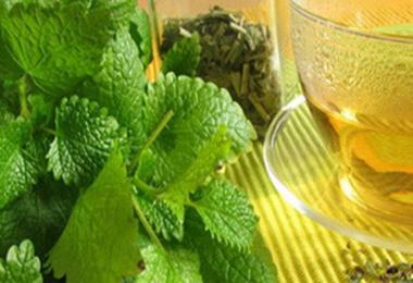 Sakinleştirici ve Rahatlatıcı İçecek Melisa Çayı