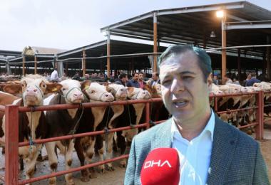 Tarım Bakanlığı Bilim Kurulu Üyesi: Hayvan Pazarında Tokalaşma Kalkmalı