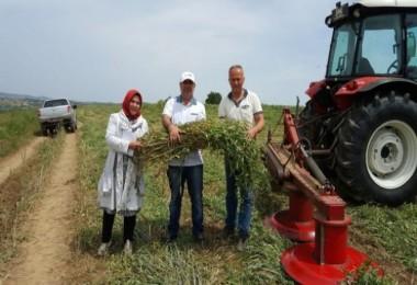 Büyükşehir'den çiftçilere yerli tohum desteği