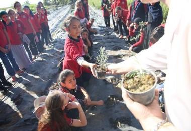 Yeşeren Çocuklar Projesi İle Çocuklar Expo'da Yeşeriyor, Tarımı Öğreniyor