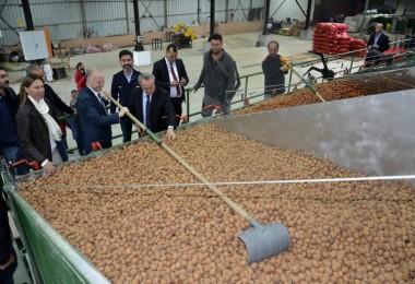 Vali Mehmet Ceylan Ceviz İşleme Tesisinde İncelemelerde Bulundu