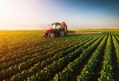 Tarım Alanlarının Yüzde 15'i İpotekli
