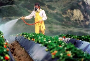 Tarım İlacına 371 Milyon Dolar Gitti