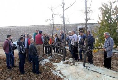 Balıkesir Gönen'deki Örnek Meyve Bahçesine Teknik Gezi