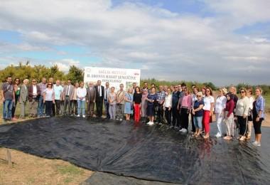 Yalova'da Aronya Hasat Şenliğinin İkincisi Düzenlendi