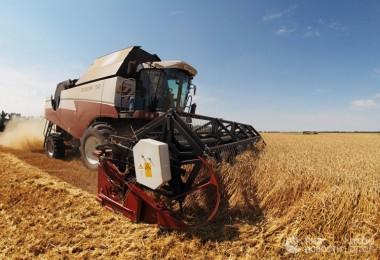 Alman Medyası: Rus Tarımı İnanılmaz Bir Yükseliş Sergiliyor