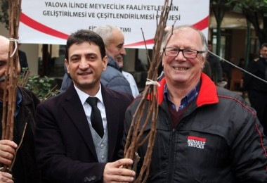 Çiftçilere Trabzon Hurması Fidanı Dağıtıldı