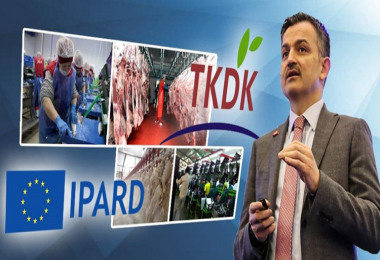 Bakan Pakdemirli: 34 projeye 35 milyon lira hibe