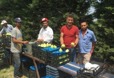 Sarıbal: Çitçimize, Tarımımıza Sahip Çıkmalıyız