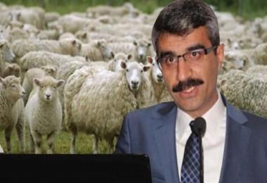 Böyle torpil görülmedi: Yardımların tümü AK Parti'lilere!