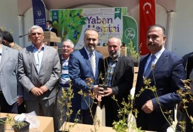 Bursa'da Üreticilere 5700 Adet Yaban Mersini Fidanı Dağıtıldı