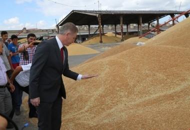 Vali Gül Buğday Pazarında İncelemelerde Bulundu