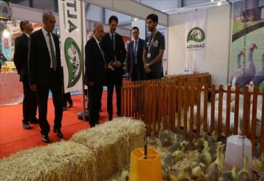 'Mobil Hayvan Hastanesi' Çiftçilerin İlgi Odağı Oldu