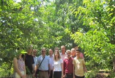 Kanadı Noktalı Sirke Sineği ve Akdeniz Meyve Sineği Hakkında Hizmet İçi Eğitim Verildi