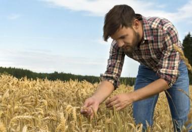 16 Bin 733 Genç Çiftçiye 503 Milyon TL Hibe