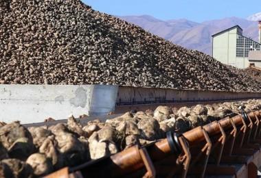 Son Dakika: 5 şeker fabrikasının satışına onay çıktı