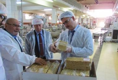 Hibe Destekleriyle Gıda Üretim İşletmeleri Modernleşiyor