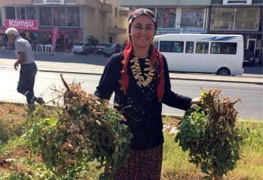 Refüjde yöresel ürünler hasat edildi