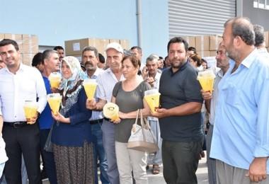 Borsada Akdeniz Meyve Sineği Tuzakları Dağıtıldı