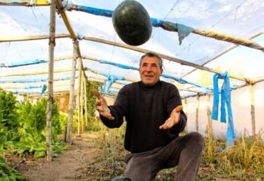 Iğdırlı Çiftçi Ninesinin Sandığında Bulduğu Tohumla Büyük Kazanç Sağladı